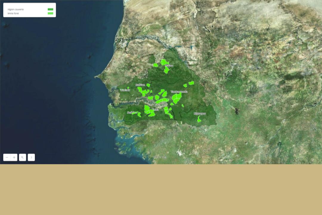 <strong>PROGEDE2 : MIse en place d'un système d'information intégrée pour la gestion durable des ressources forestières et des combustibles domestiques au Sénégal</strong>